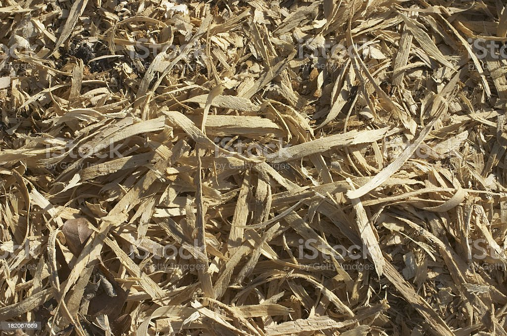 Fresh wood chippings shavings royalty-free stock photo