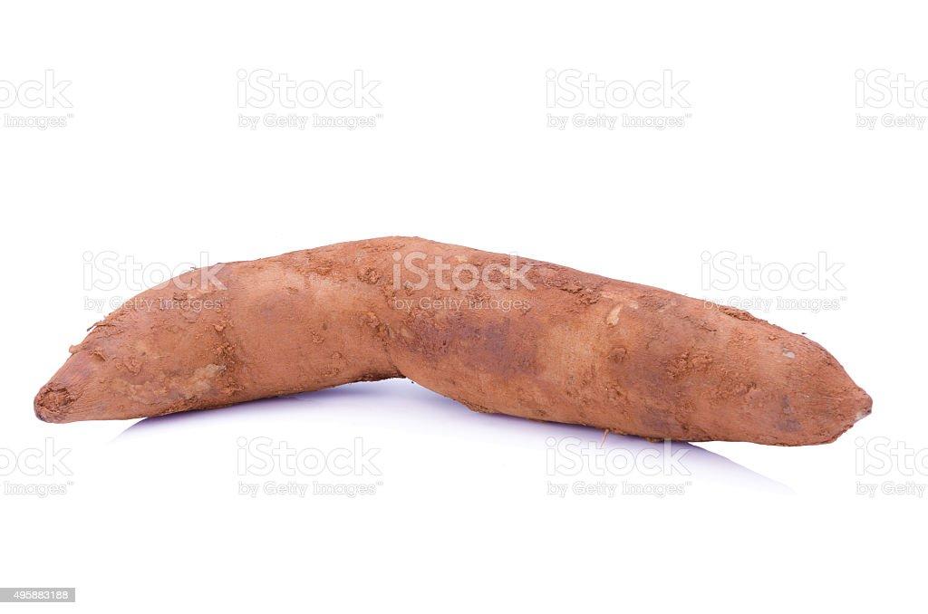 Fresh Yacon roots on white background stock photo