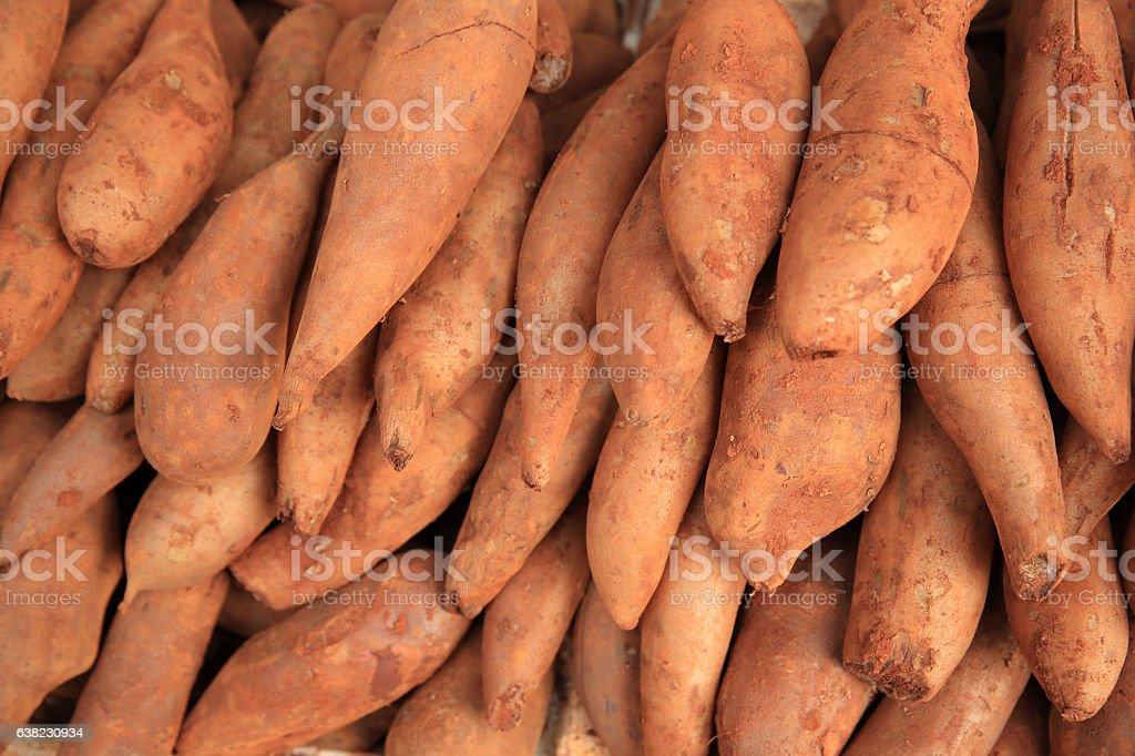 fresh yacon  selling at market stock photo