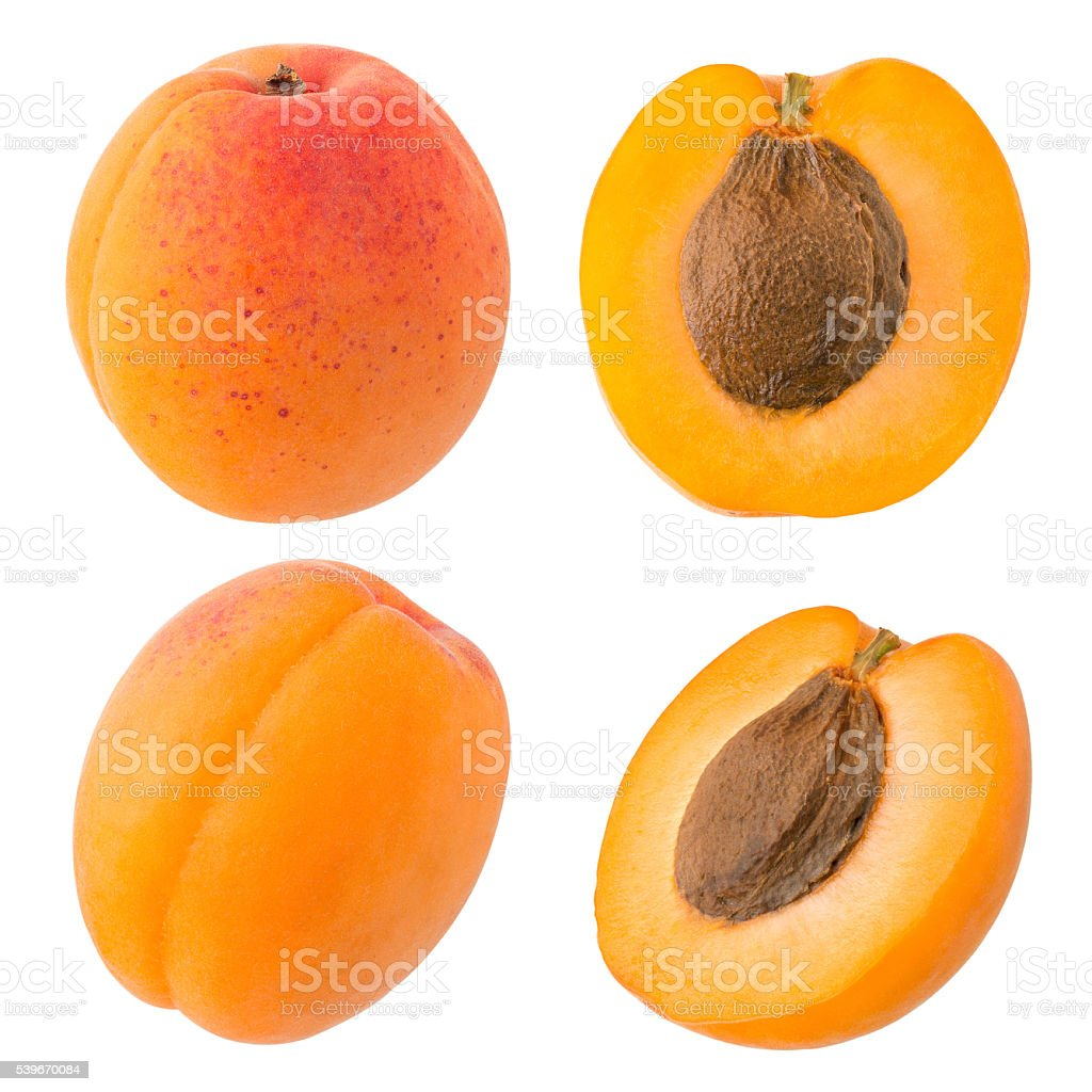 Fresh Yellow Apricot stock photo