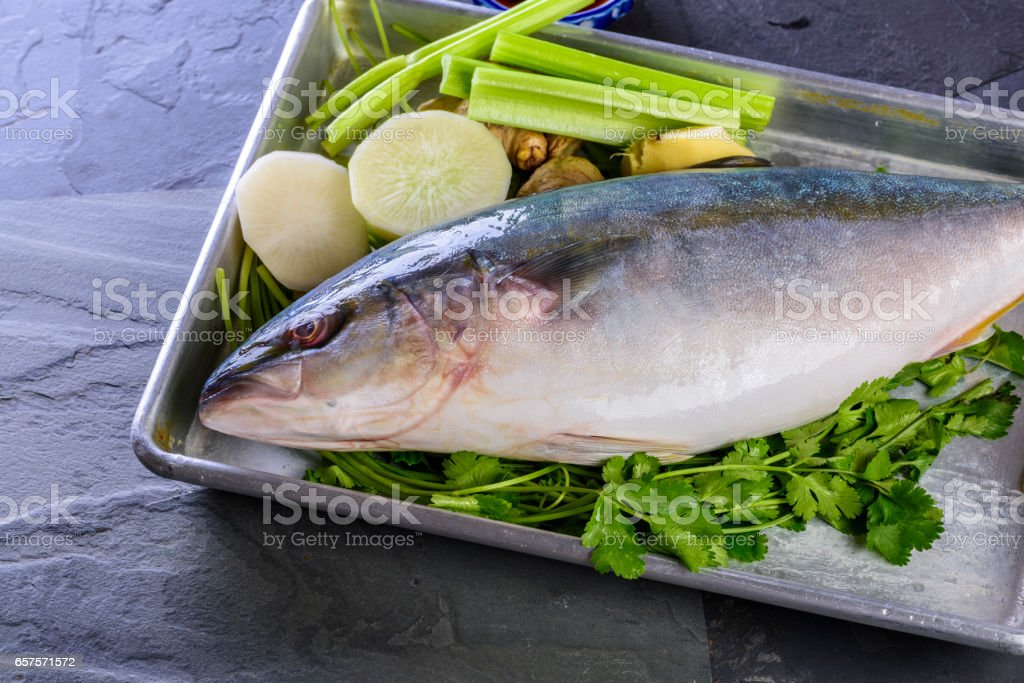 Fresh Yellowtail stock photo