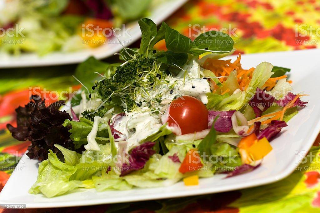 Fresh,big italian summer salad ,a close up shot royalty-free stock photo
