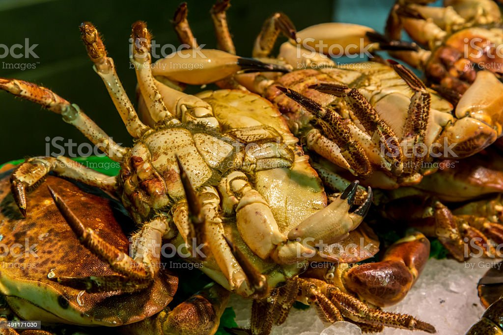fresh-caught crabs, are photographed in fish market stock photo