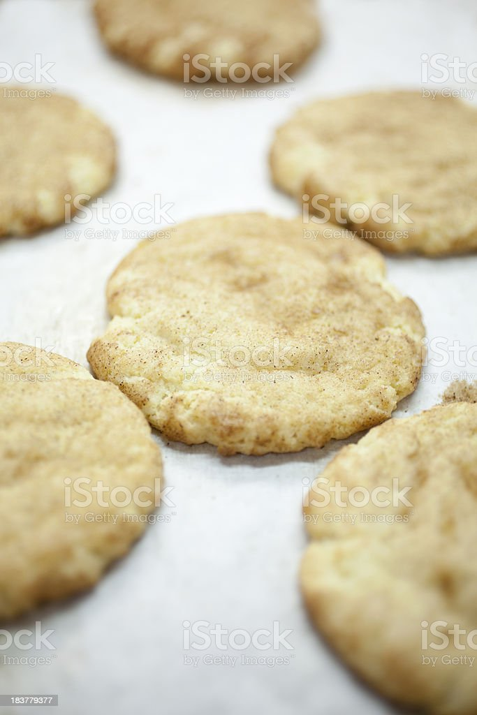 Freshly baked snickerdoodles stock photo