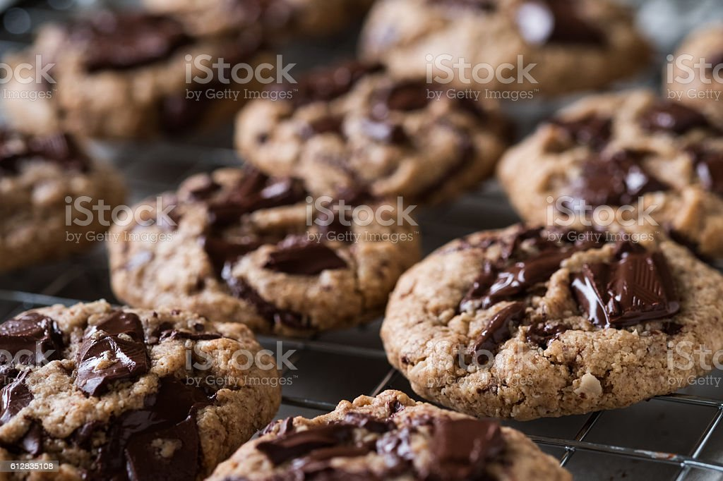 Freshly Baked Vegan Oatmeal Chocolate Chunk Cookies on Cooling Rack stock photo