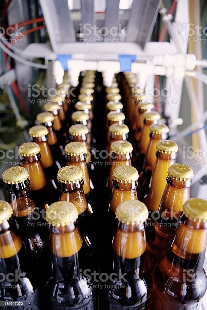 Freshly Bottled Beer royalty-free stock photo