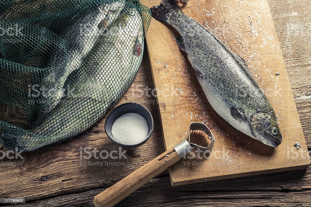 Freshly caught fish for dinner royalty-free stock photo