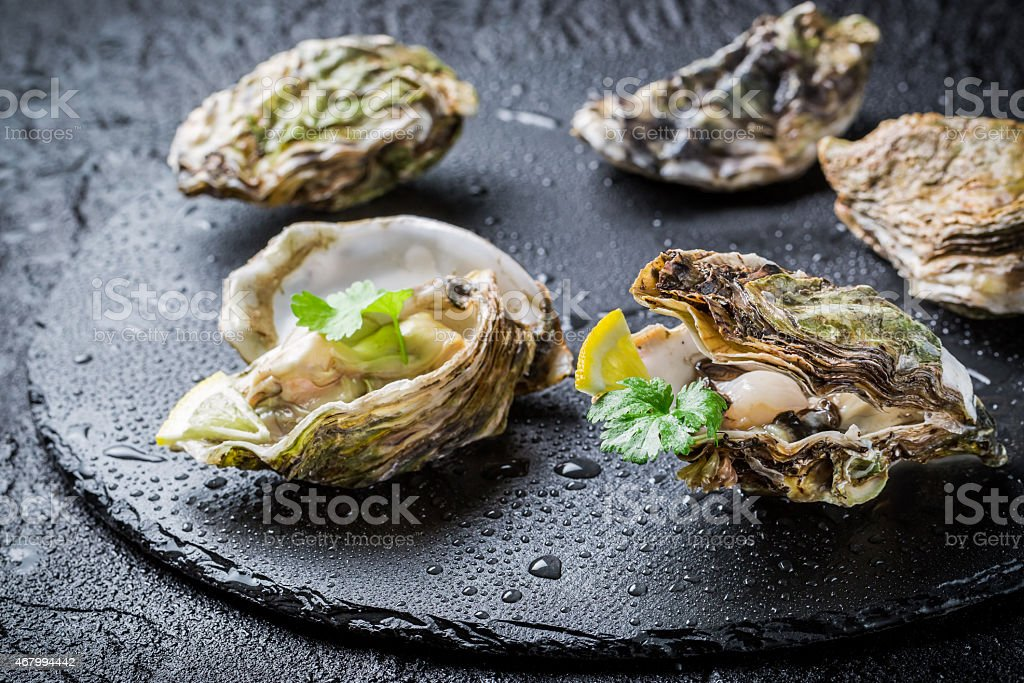Freshly caught oyster in shell on black rock stock photo