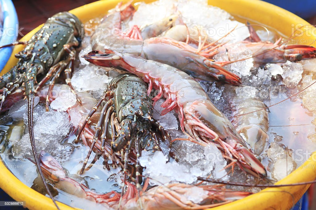 Freshly caught shrimp and lobster at the fish market stock photo