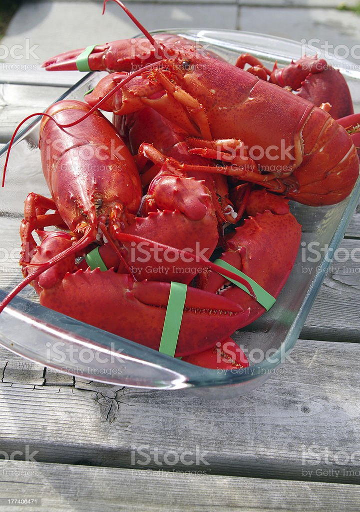 Freshly Cooked Lobster stock photo