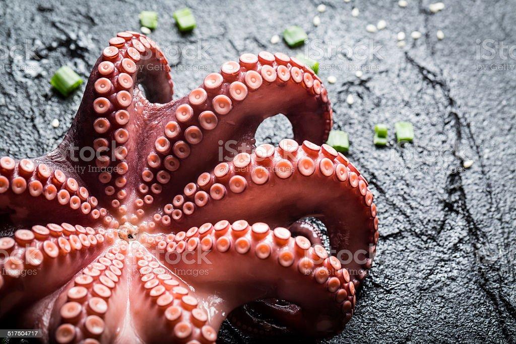 Freshly cooked purple octopus stock photo