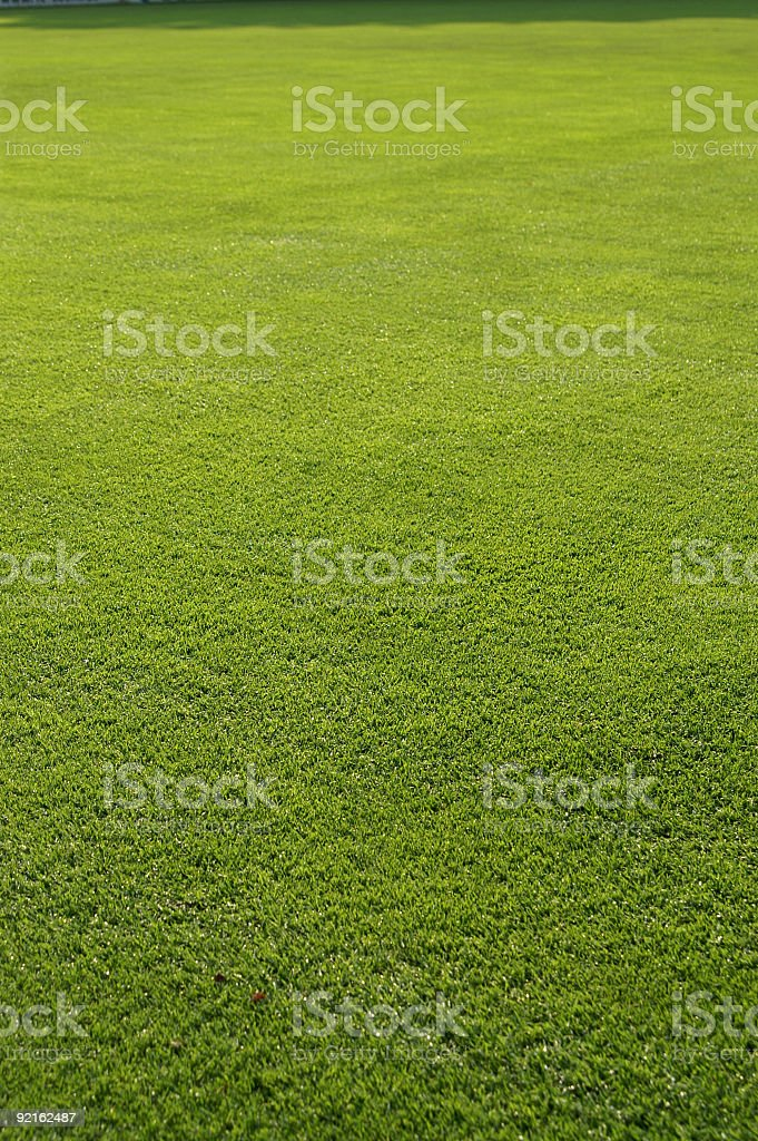 Freshly cut grass royalty-free stock photo