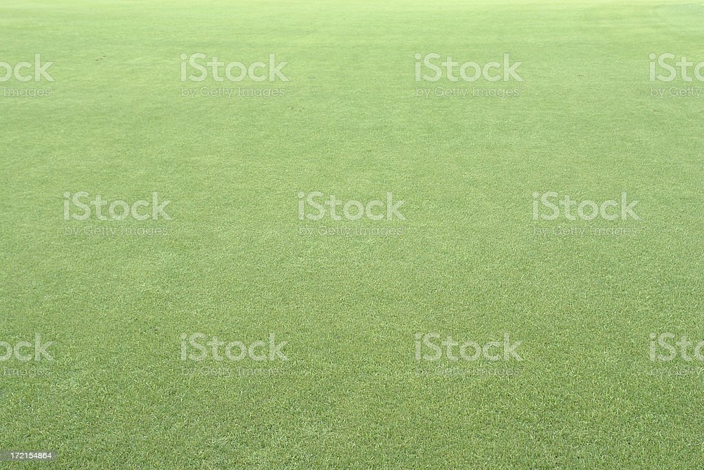 Freshly cut green grass royalty-free stock photo