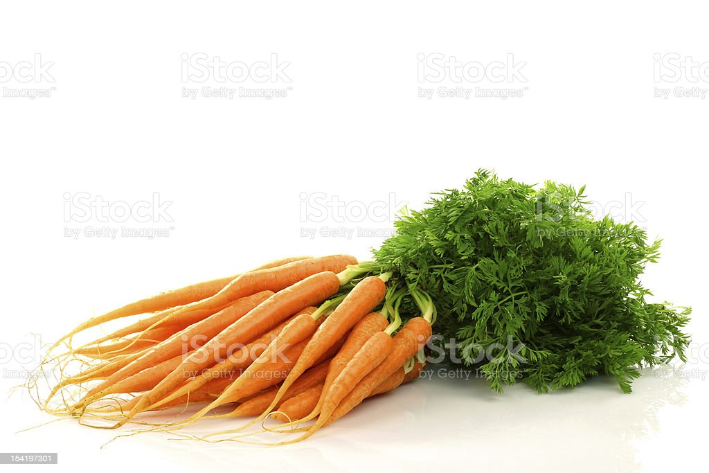 freshly harvested bunch of carrots stock photo