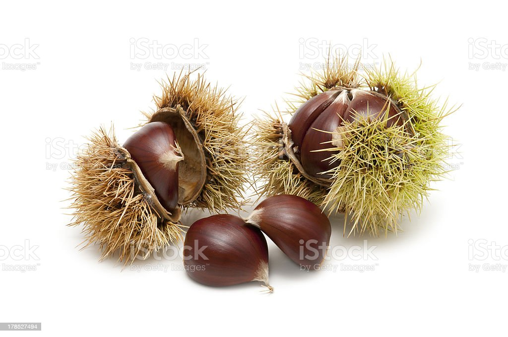 Freshly harvested chestnuts royalty-free stock photo