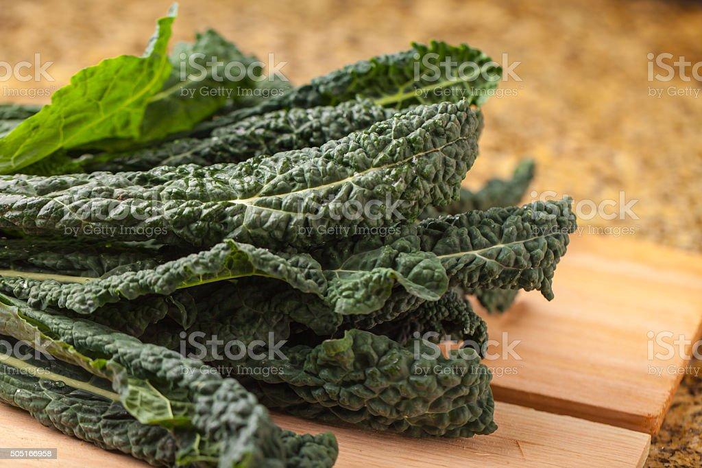 Freshly harvested lacinato kale stock photo