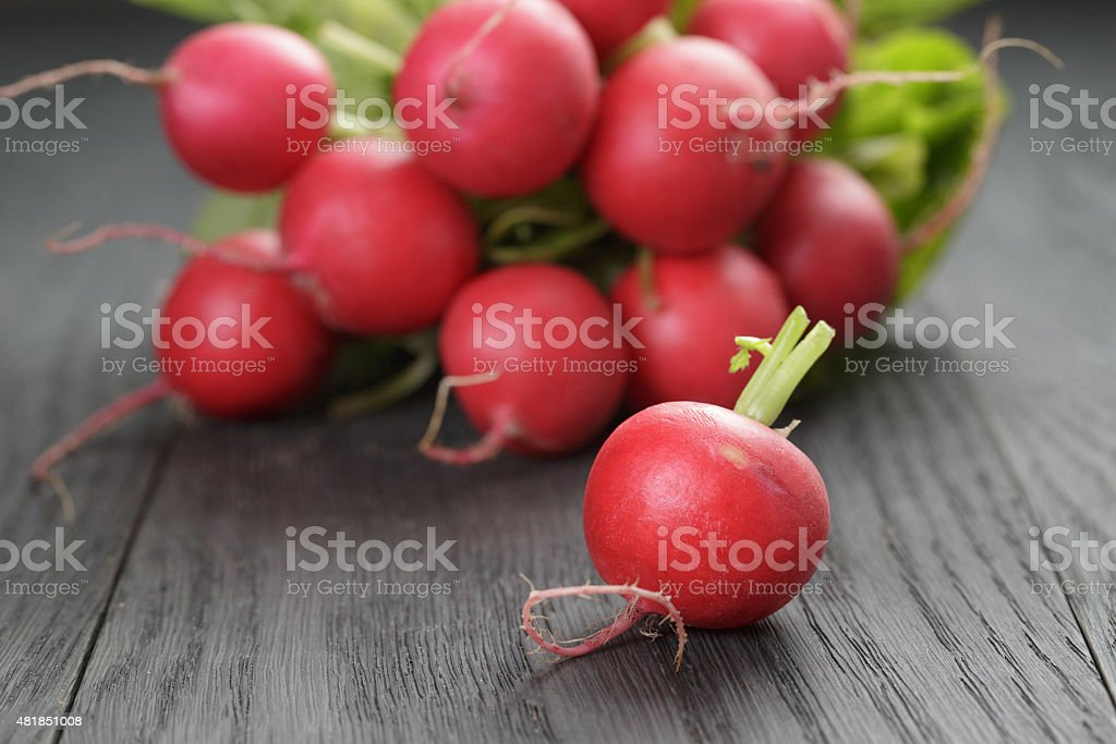freshly harvested radishes on rustic table stock photo