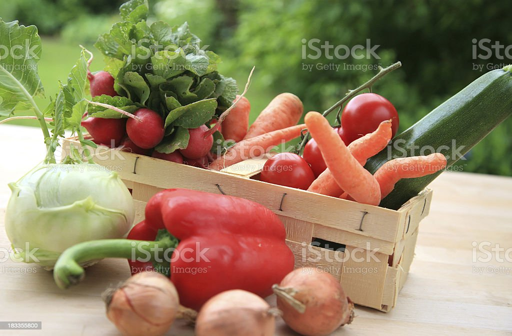 Freshly harvested vegetables on the table royalty-free stock photo