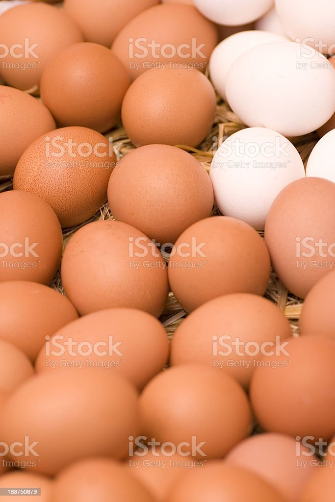 Freshly Laid Eggs royalty-free stock photo