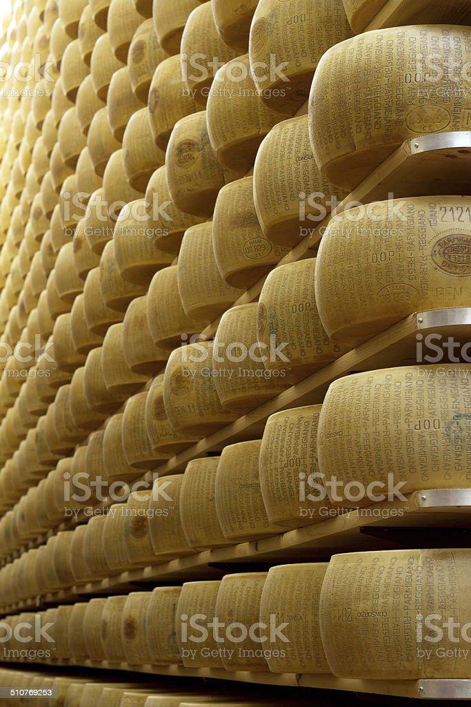freshly made cheese stock photo