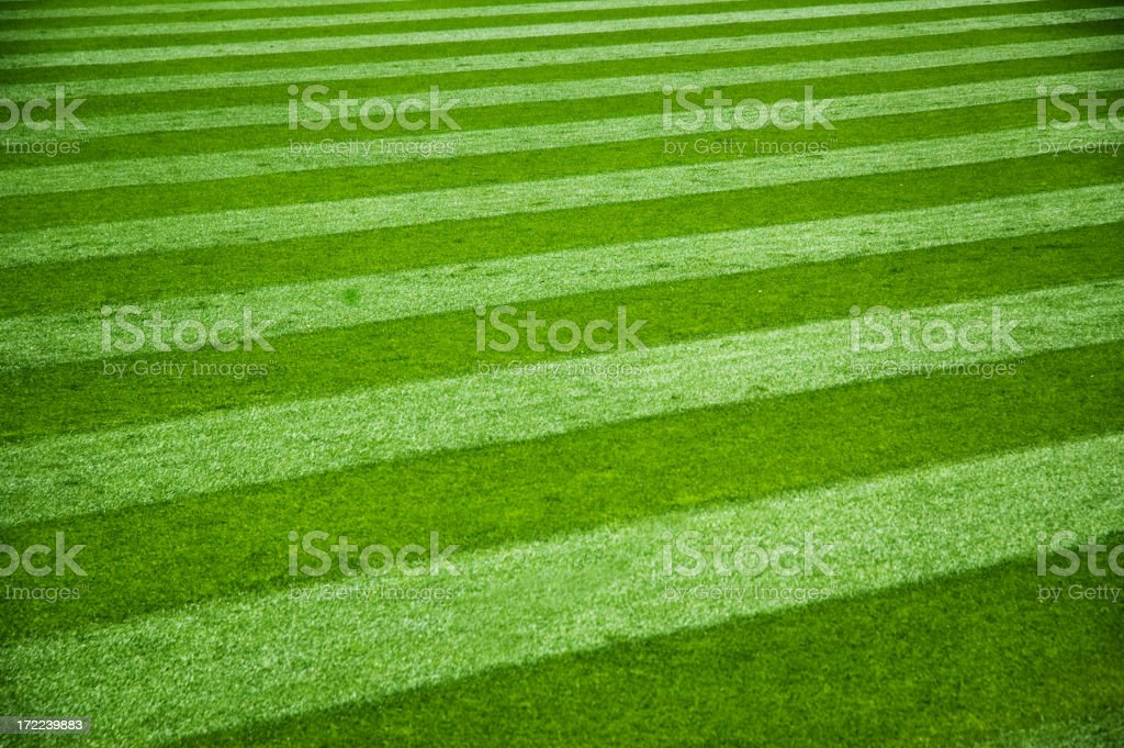 Freshly mowed grass with stripes from mower royalty-free stock photo