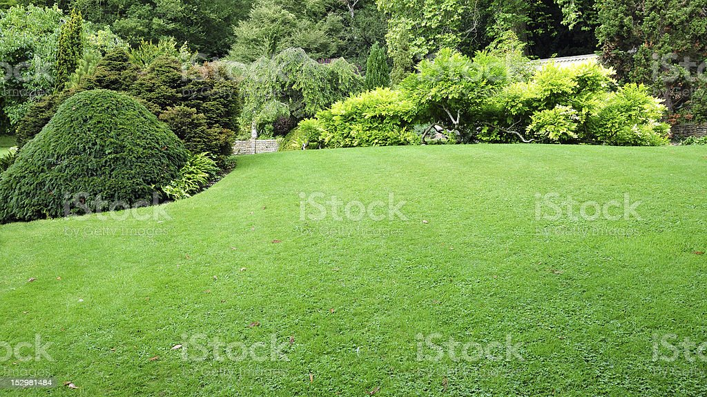 Freshly mowed green lawn with lush trees around stock photo