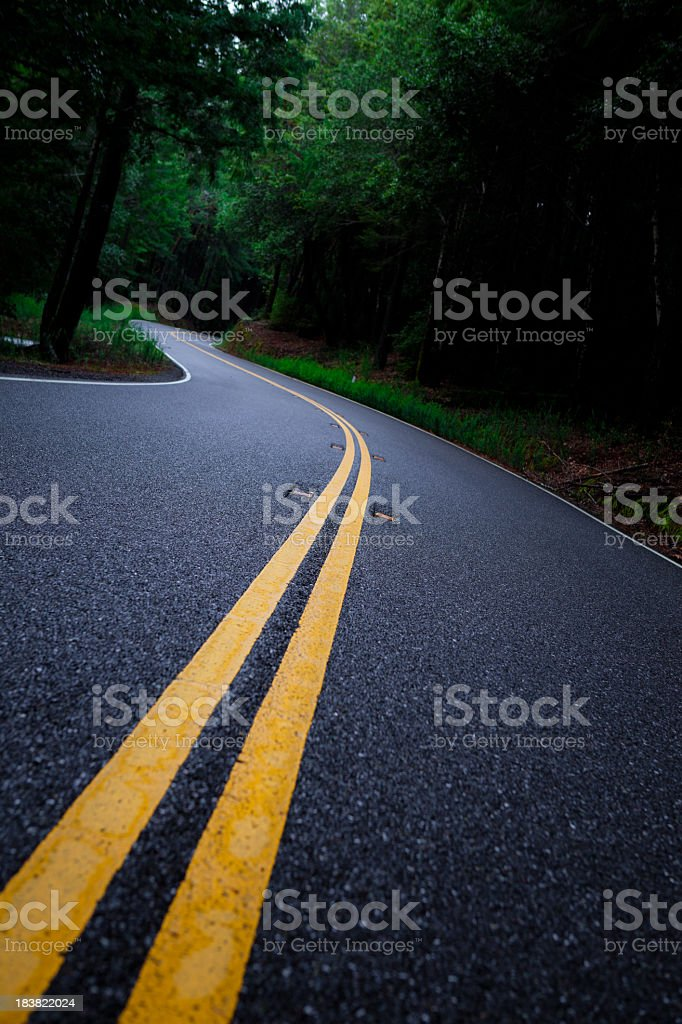 Freshly Paved Highway 1 through Mendocino County royalty-free stock photo