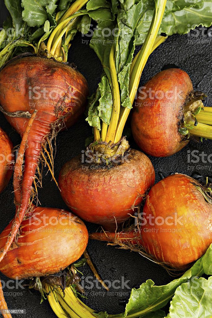 Freshly Picked Beets royalty-free stock photo