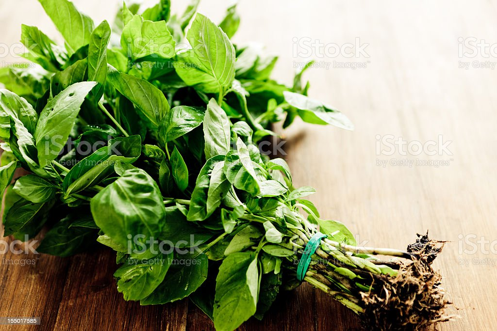 Freshly picked bunch of basil on wooden table stock photo