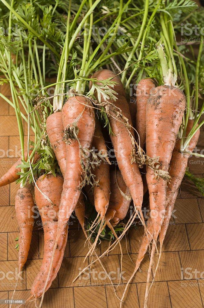 Freshly Picked Carrots royalty-free stock photo