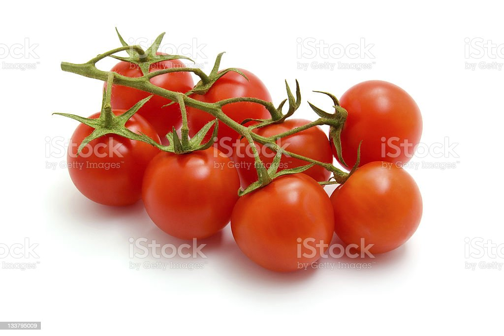 Freshly picked cherry tomatoes on a branch stock photo