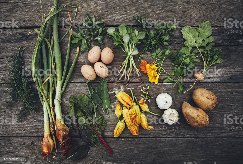 Freshly picked farm crops stock photo