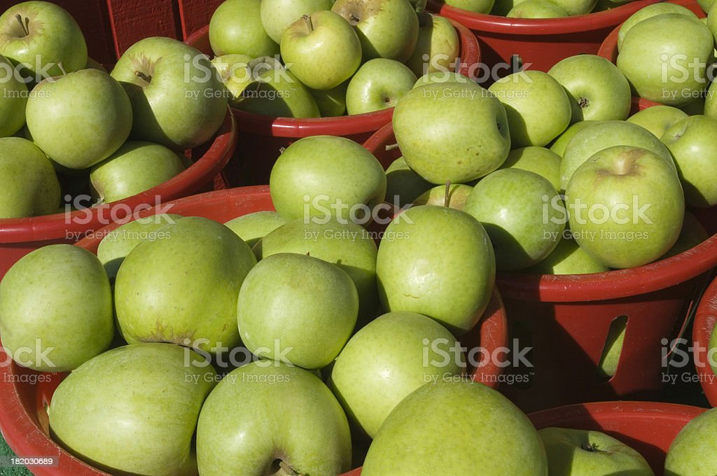Freshly picked green apples, in terracotta tubs. stock photo
