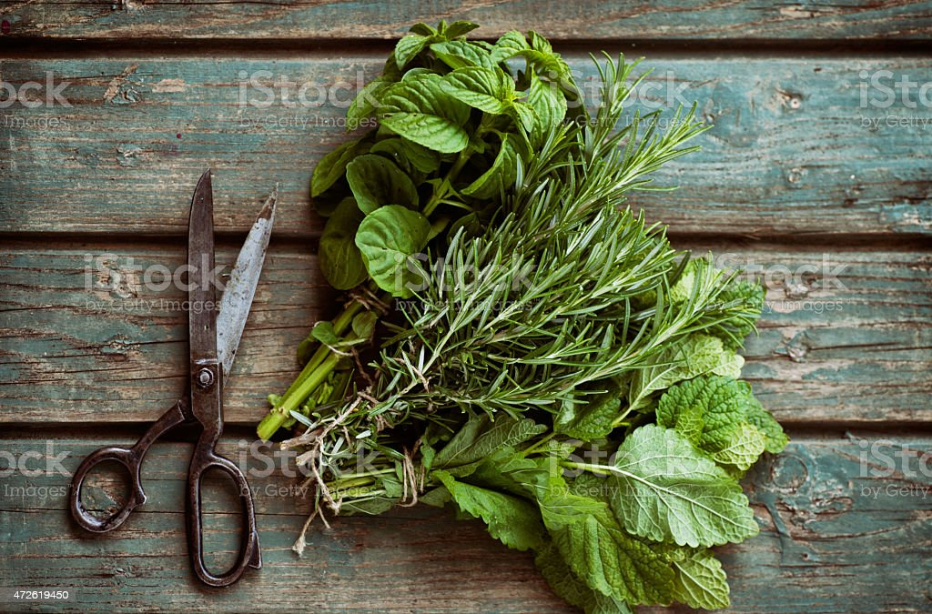 Freshly picked herbs on a wooden board stock photo