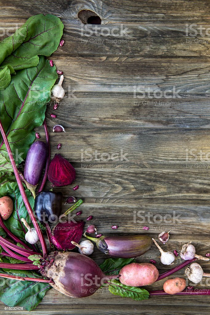 Freshly Picked Homegrown Vegetables stock photo