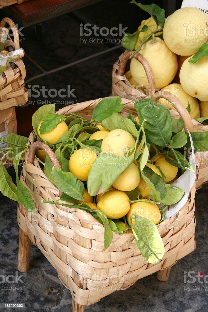 Freshly picked lemons in a basket stock photo
