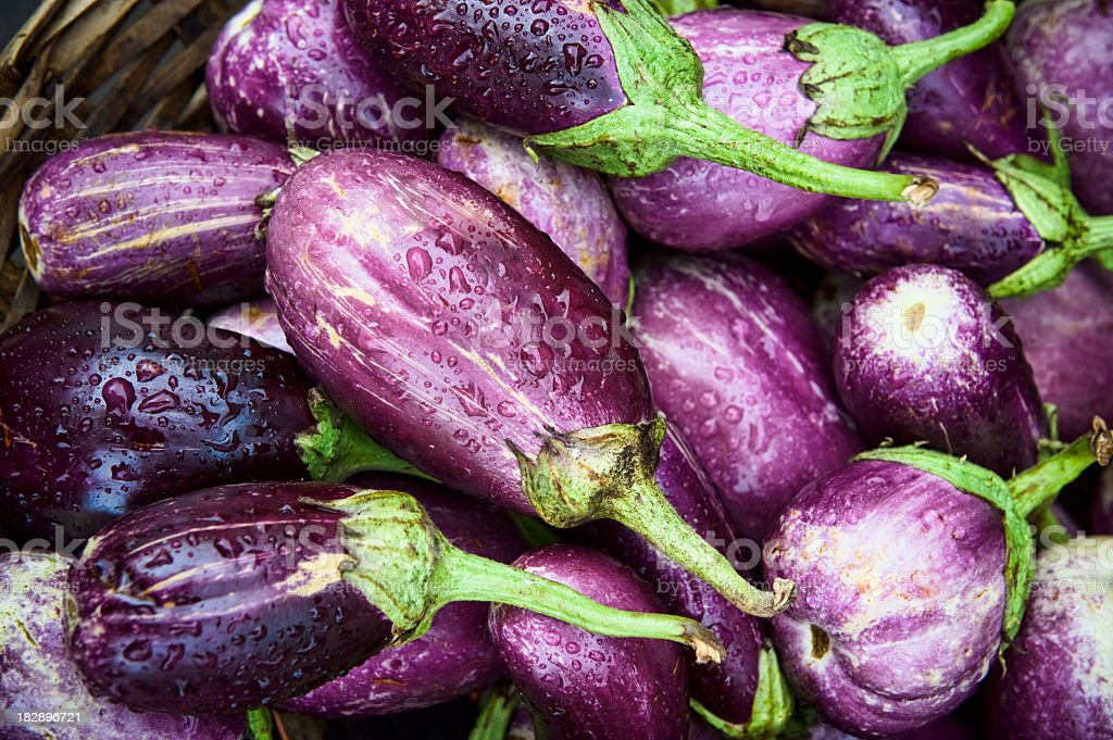 Freshly picked organic eggplants stock photo
