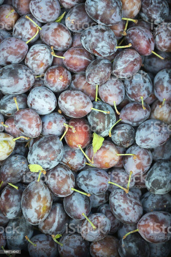Freshly Picked Purple Plums at a Farmers Market royalty-free stock photo