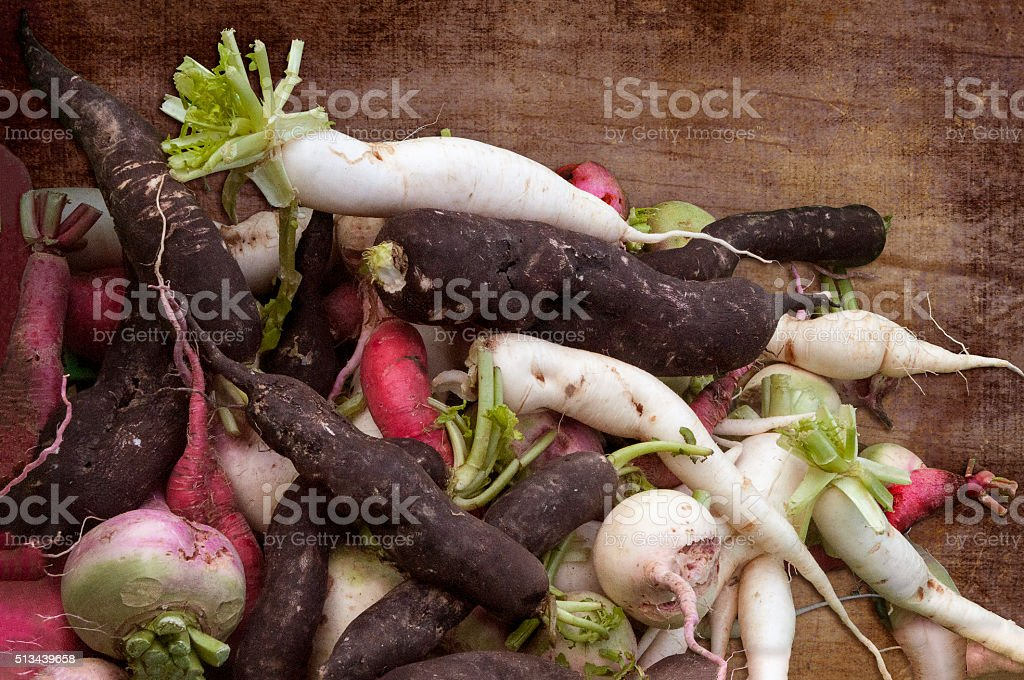 Freshly picked root vegetables stock photo