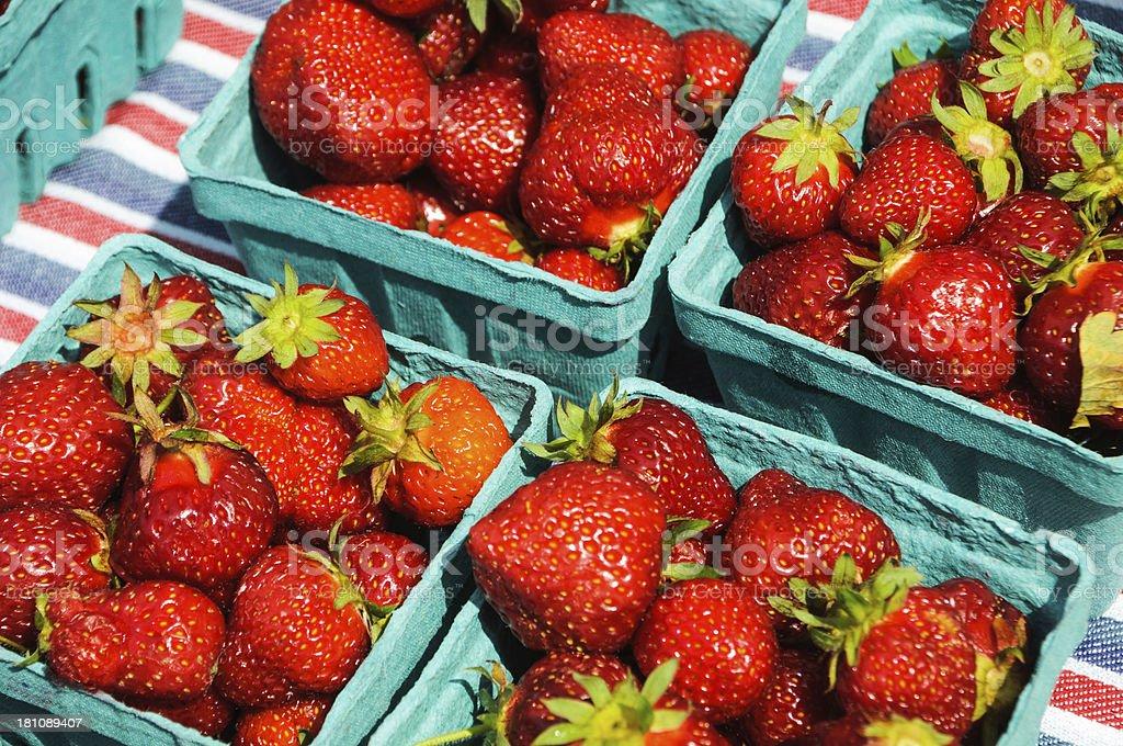 Freshly Picked Strawberries royalty-free stock photo