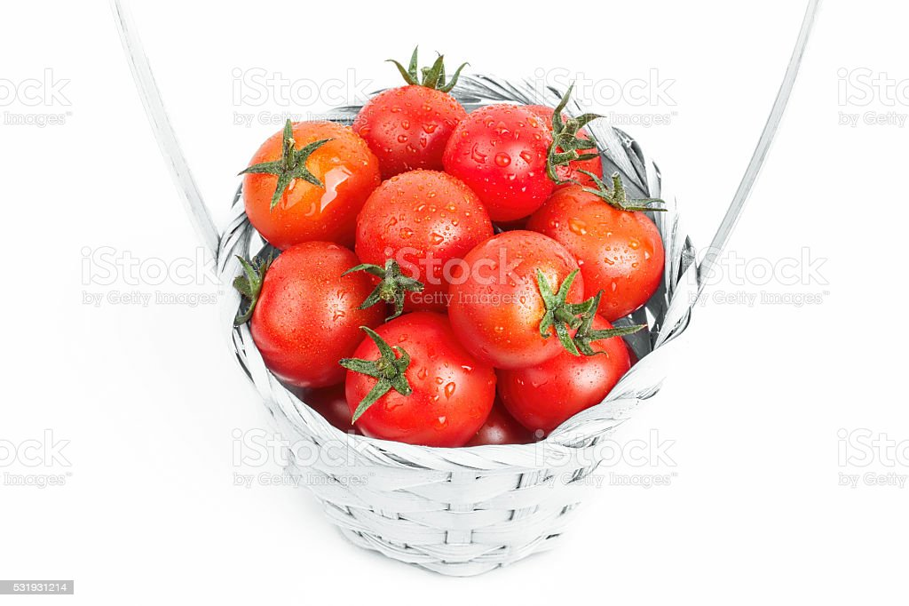 Freshly picked tomatoes isolated on white background stock photo