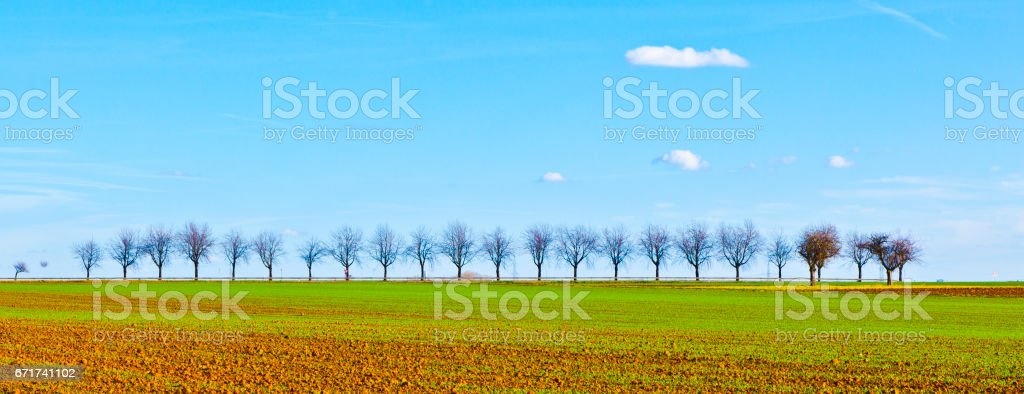 freshly ploughed acre with row of trees at the horizon stock photo