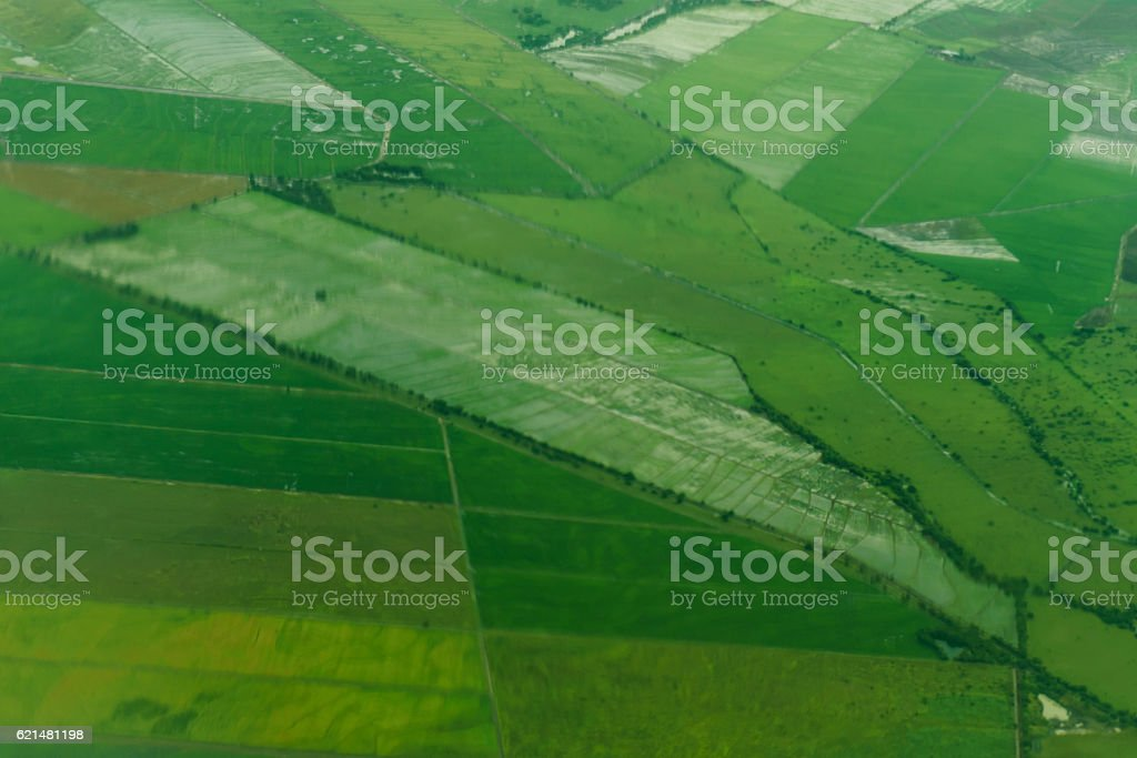 Freshly plowed and sowed farming land from above. stock photo
