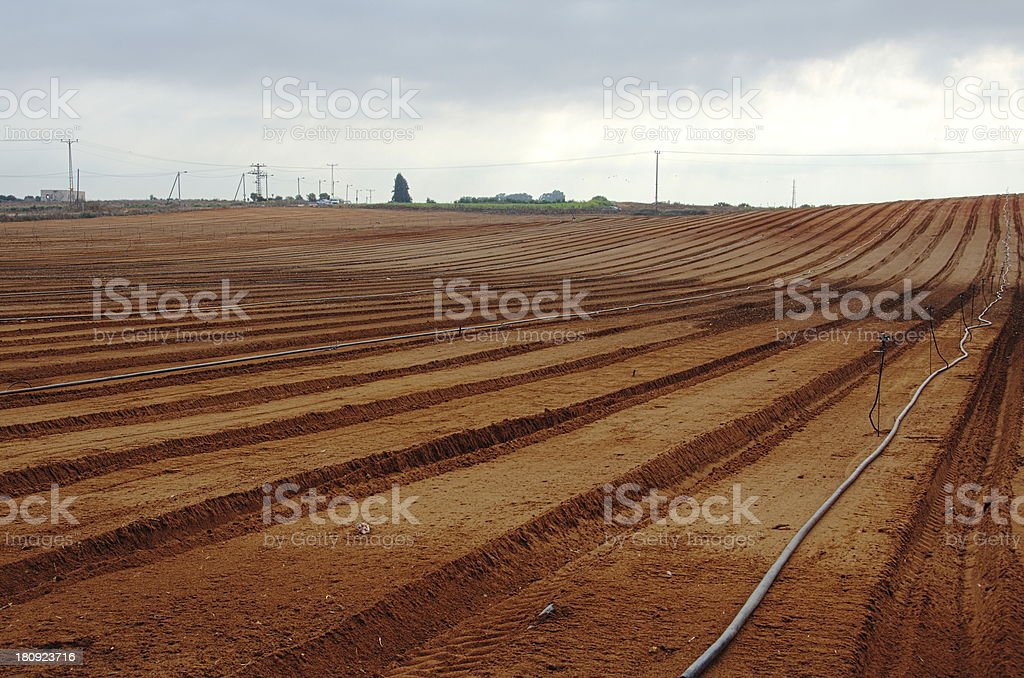 Freshly plowed farm field ready for planting royalty-free stock photo