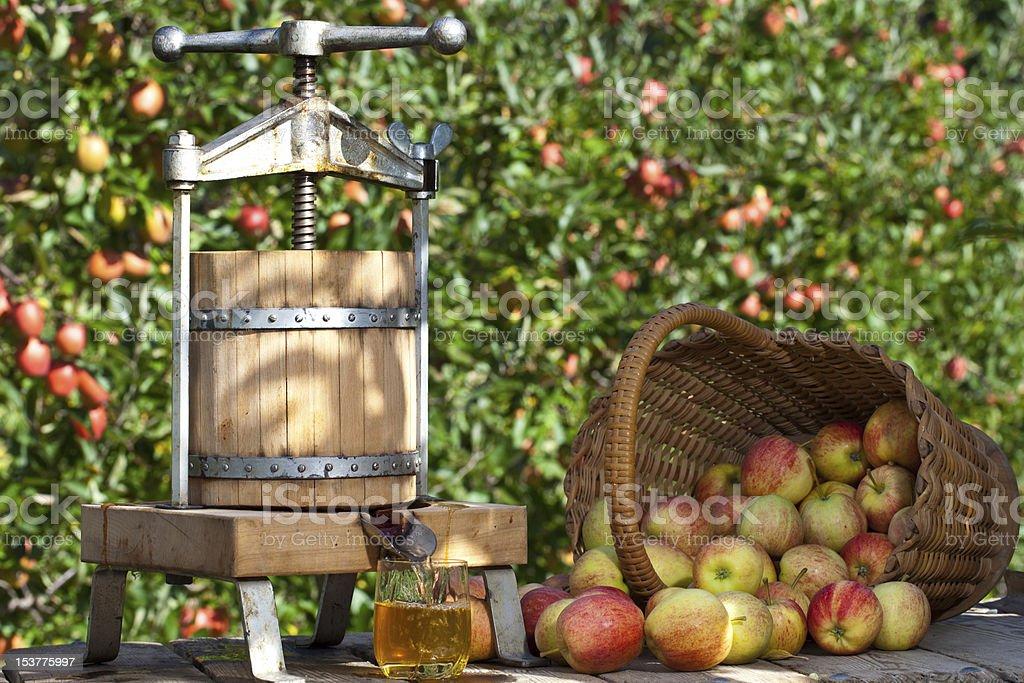 Freshly pressed Apple Juice royalty-free stock photo