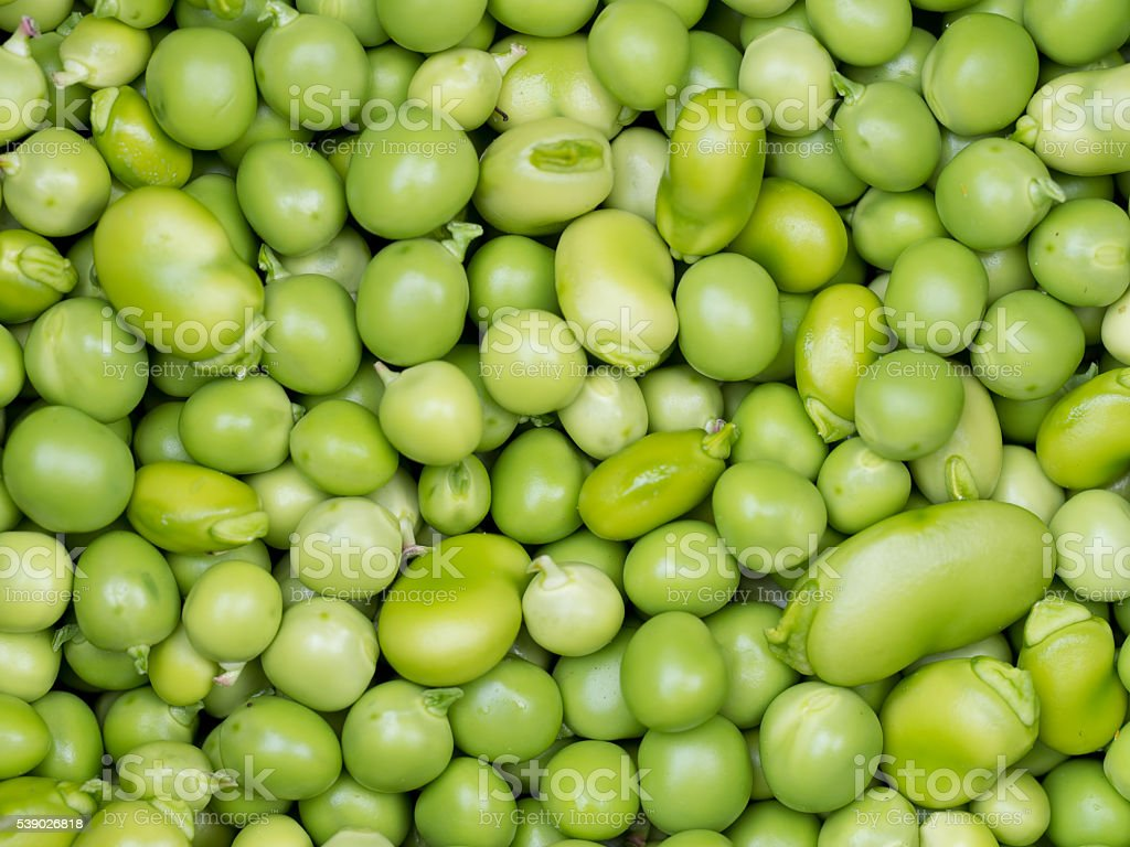 Freshly shelled peas and broad beans. stock photo