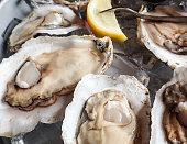 Freshly shucked oysters