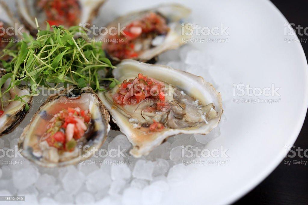 Freshly Shucked Oysters stock photo