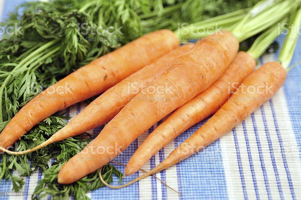 Freshly washed whole carrots royalty-free stock photo