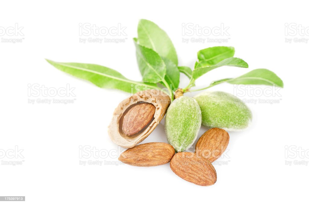 Freshness almonds royalty-free stock photo